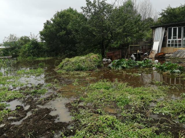 90 приусадебных участков и 3 жилых дома подтоплено в Биробиджане