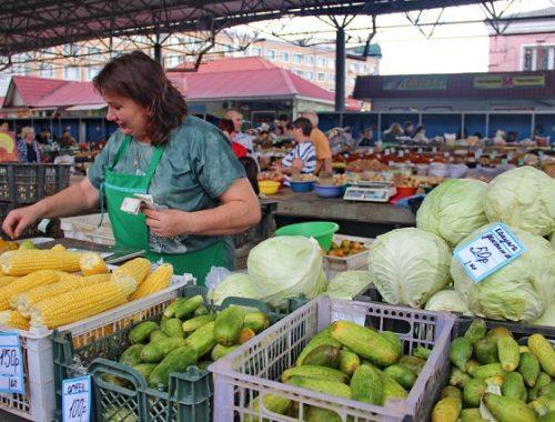 «Золотыми» стали свежие овощи в Биробиджане в период наводнения