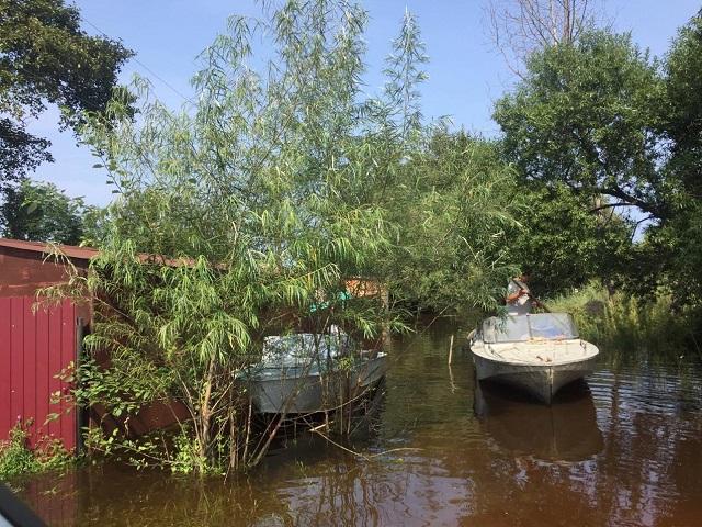 Очередной циклон приближается к ЕАО, но наводнение не прогнозируется