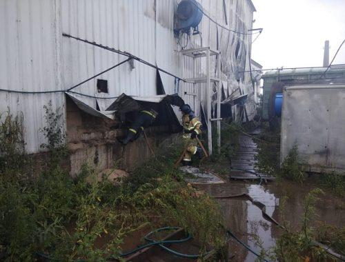 Полтора часа боролись с огнем на складе сои биробиджанские спасатели