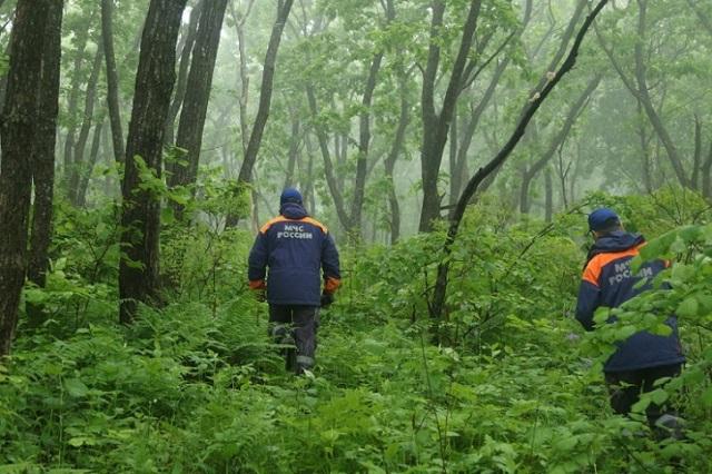 Биробиджанец пошел по ягоды и заблудился в лесу