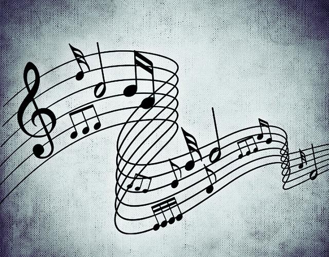 Громкая музыка вывела росгвардейцев на преступление в Биробиджане