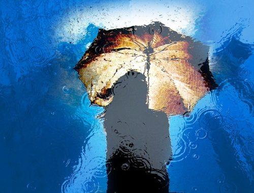 Сильный дождь с ветром надвигаются на ЕАО