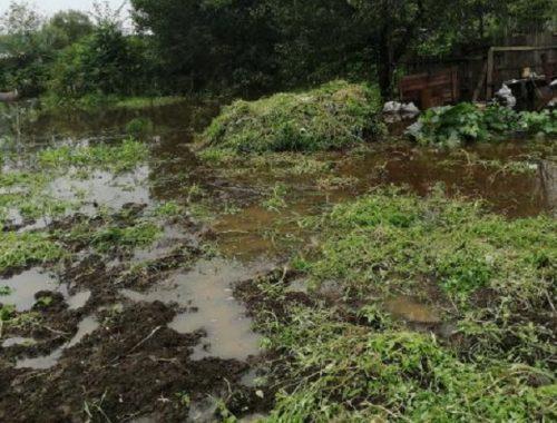 В ЕАО остаются подтопленными свыше 15 тысяч сельхозугодий