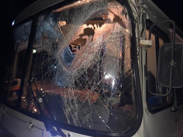 Бревно пробило стекло в пассажирском автобусе в Биробиджане: пострадал водитель