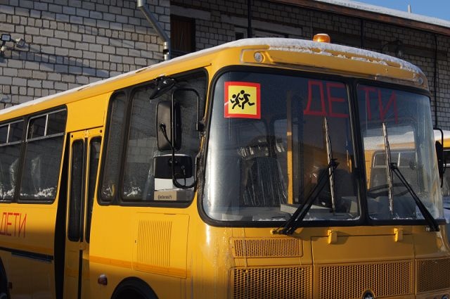 Страдающий алкоголизмом водитель работал на школьном автобусе в ЕАО