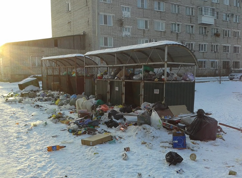 Зарастает мусором одна из биробиджанских улиц