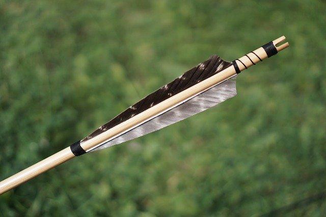 Жители ЕАО смогут охотиться с луком и арбалетом