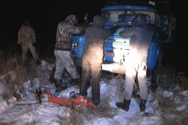 Полиция и ФСБ накрыли «черных лесорубов» в ЕАО