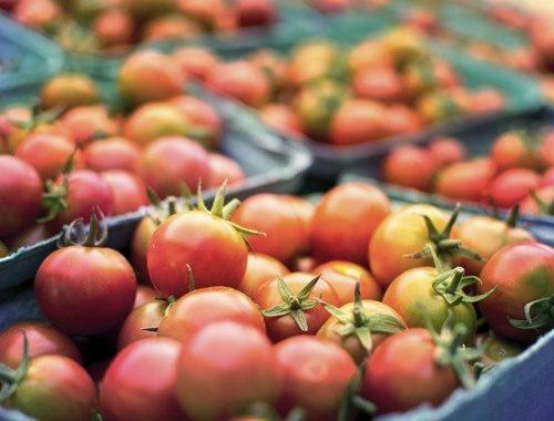 Нарушений нет: ФАС по ЕАО опубликовала итоги мониторинга цен на продукты