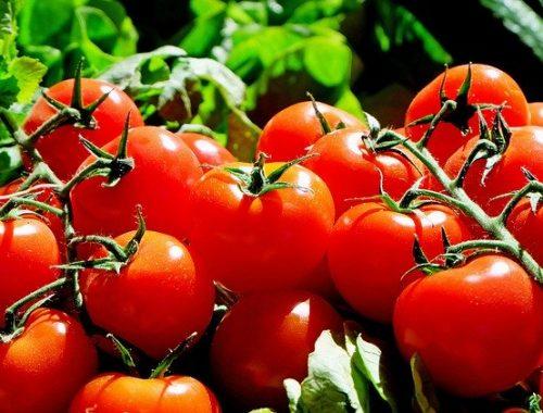 ФАС проверит обоснованность повышения цен на овощи на Дальнем Востоке