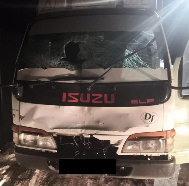 Пьяный водитель насмерть сбил пешехода в Биробиджане