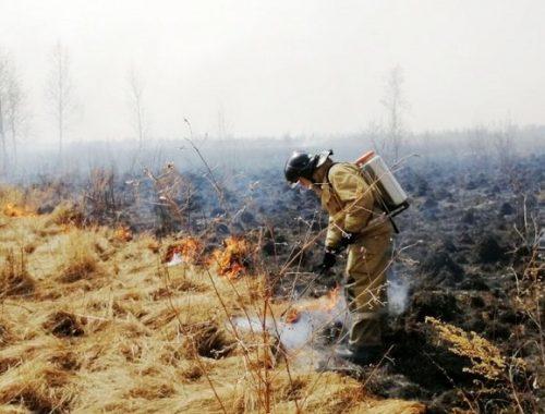 Около 100 жителей ЕАО наказали за нарушение пожарной безопасности