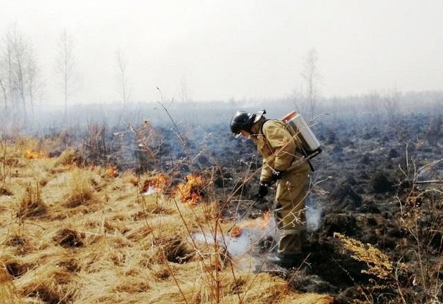 Высокий класс пожарной опасности зарегистрирован в ЕАО