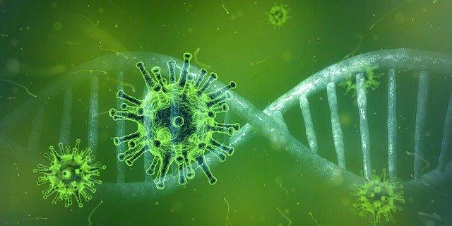 В ЕАО растет число зараженных коронавирусом: свежая сводка