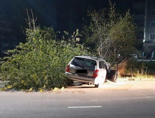 Пьяный водитель врезался в дерево в Биробиджане