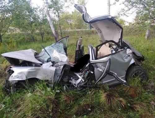 В ЕАО иномарка улетела в кювет, два человека погибли