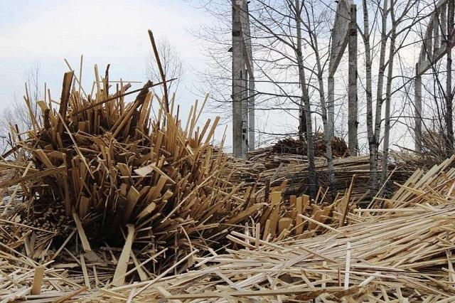 Отходы деревопереработки бесплатно доставят всем желающим в Биробиджане