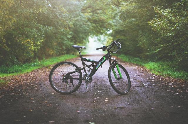 Спустя 1,5 года биробиджанец нашел украденный у него велосипед