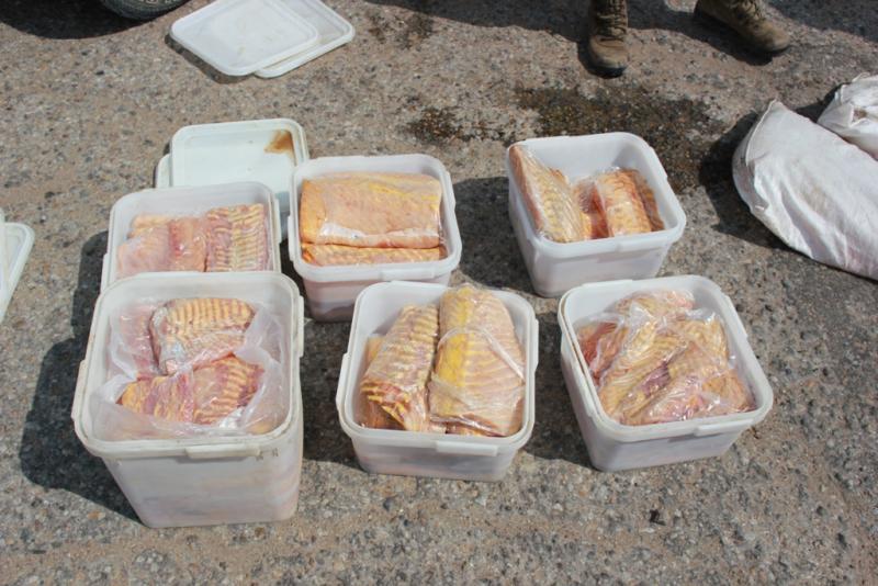 360 кг краснокнижной рыбы изъяли у биробиджанцев, возбуждено уголовное дело