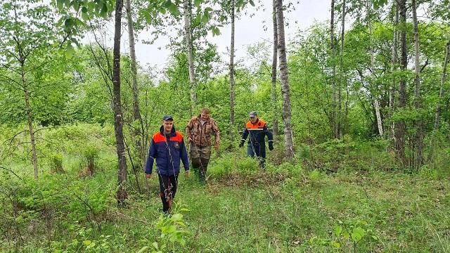 Уже несколько дней спасатели ЕАО ищут пропавшего мужчину
