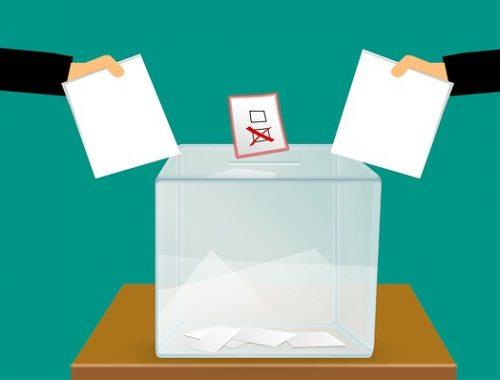 Еще один кандидат выдвинулся на выборы главы ЕАО