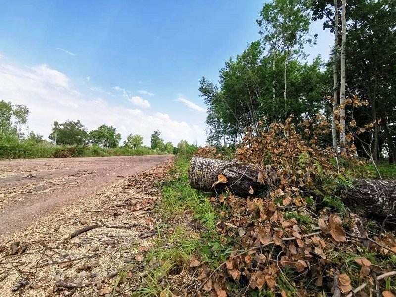 К ремонту дороги на Щукинку приступили в Биробиджане