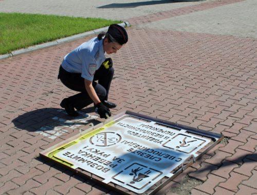 Предупреждающие надписи перед пешеходными переходами появились в Биробиджане