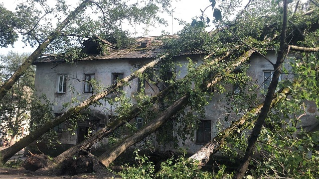 Повалены 11 деревьев, повреждены кровли домов: последствия непогоды в Теплоозерске