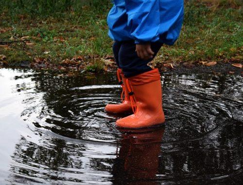 Сильные дожди не собираются покидать ЕАО