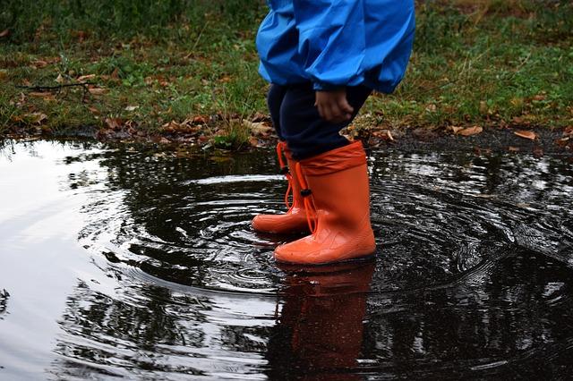Ожидаются сильные дожди: гидрологическая обстановка в Биробиджане может ухудшиться