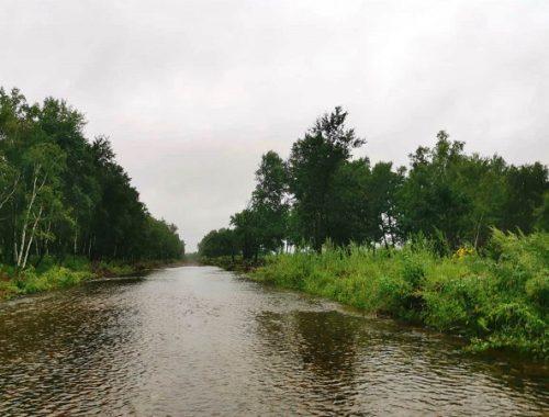 На дачном поселке Щукинка подтопило участок дороги