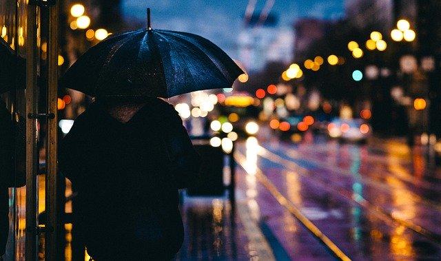 Сильные дожди ожидаются ночью в ЕАО