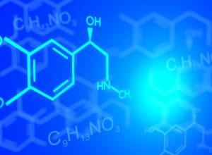 Хуже всего выпускники ЕАО сдали химию и обществознание