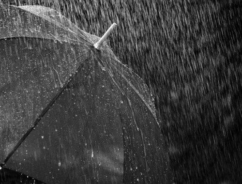 Тайфун «Бави» надвигается на ЕАО