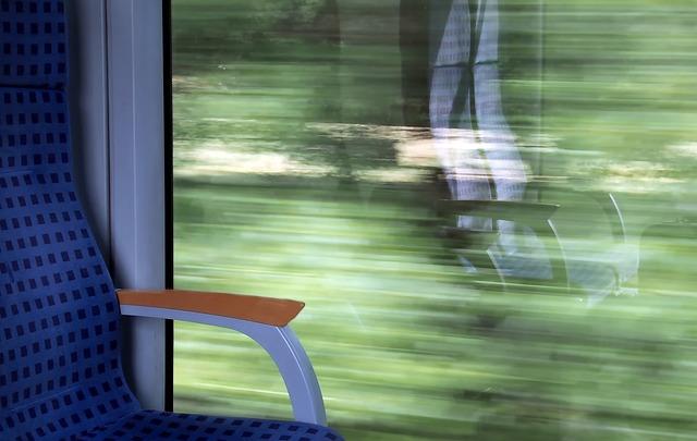 Биробиджанку обманули при покупке билетов на поезд