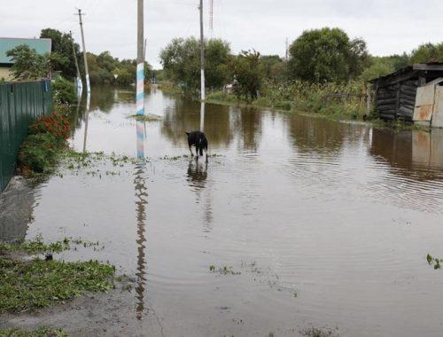 Названо число пострадавших от паводка жителей ЕАО