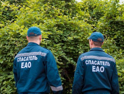 Поиски супружеской пары грибников завершены в ЕАО