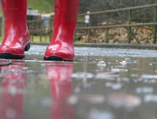 Дожди и ливни с грозами ожидаются в ЕАО в июне