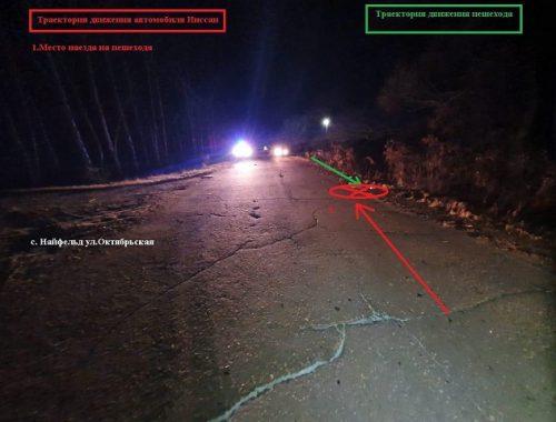 Пьяный водитель насмерть сбил 16-летнюю девушку в ЕАО