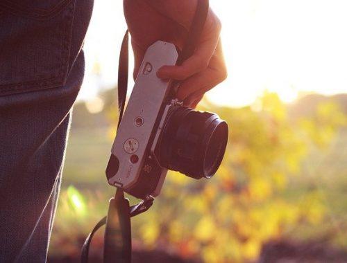 Фотолюбителей из Швейцарии оштрафовали в ЕАО