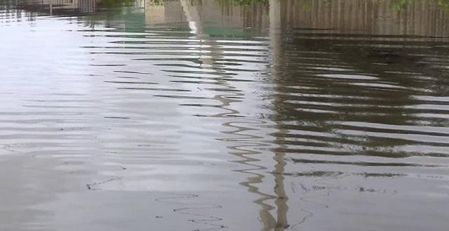 Десять приусадебных участков в ЕАО до сих пор не освободились от воды