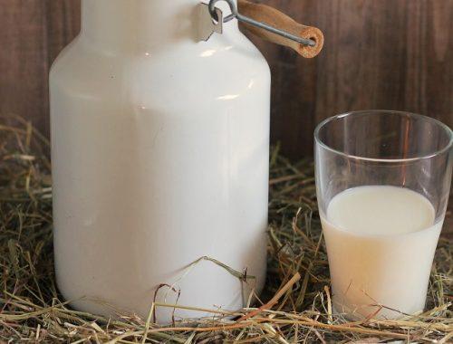 В ЕАО выросли субсидии за сданное на переработку молоко