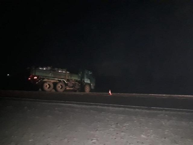Пьяный пешеход угодил под колеса грузовика в ЕАО