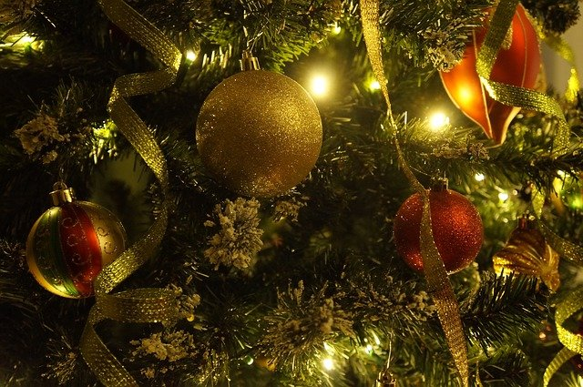 В ЕАО 31 декабря объявили выходным днем