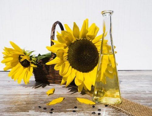 Регулирование цен на сахар и подсолнечное масло обсудили в ЕАО