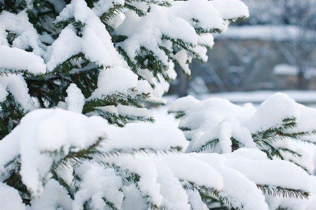 Сильный снег с ветром надвигается на ЕАО