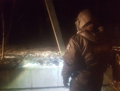 Макет гранаты и части пистолета нашли у посетителей кафе в Биробиджане