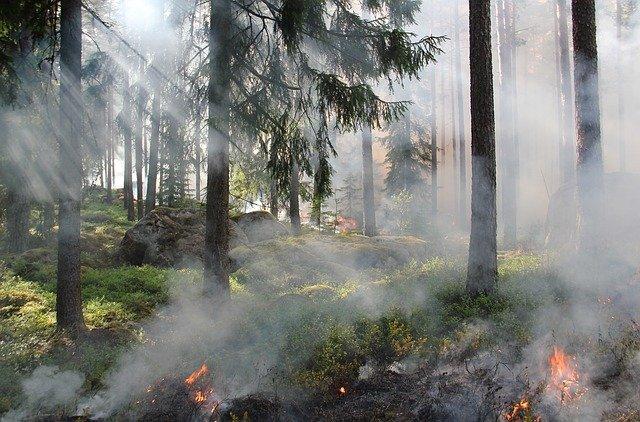 В Октябрьском районе не готовятся к пожароопасному сезону