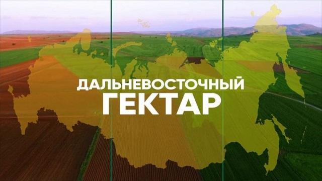 Получить второй «дальневосточный гектар» смогут жители ЕАО